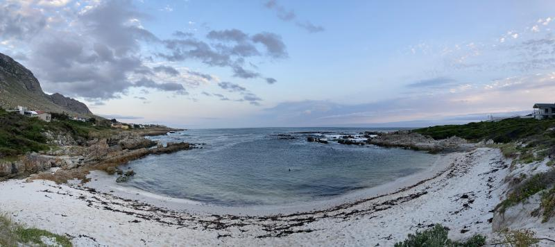 Figure 1: GOU#1 living her best life at in the Betty's Bay water at dusk, accompanied by spectaculour colours.